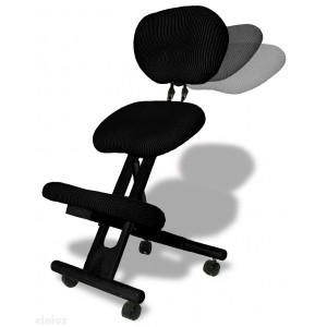 Professionelle ergonomischer Stuhl mit Rückenlehne