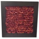 Quadro petali rossi 67 x 67